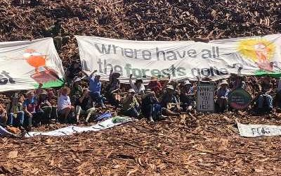 Nannas for Native Forests conduct a 'citizen inspection' of Simcoa's Silicon Plant Near Bunbury
