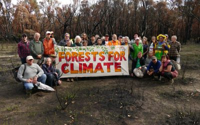 South West  Threatened Forests Tour