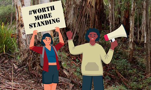 Great News! The State Government is surveying the public about logging our SW forests.
