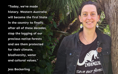 A huge win for WA forests!